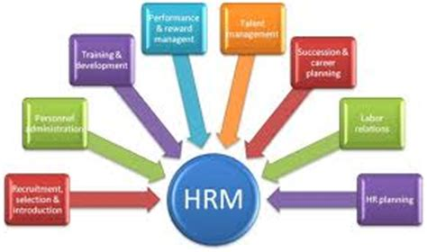 HR Generalist Career Objective and Career Summary